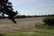 Halam Mill farmland