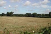 Fields of Valley Farm