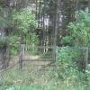 Kirkford Plantation.