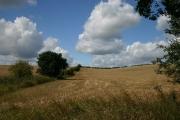 Cambridgeshire farmland, near Ashley