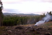 Wood Burning At Tilquhillie Woods