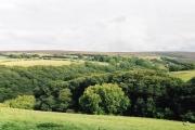 Brendon: Shilston Hill from Cheriton
