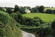 Brendon: towards Cranscombe Farm, Scob Hill