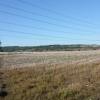 Filchampstead beyond fields