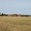 NE edge of Boarhills village