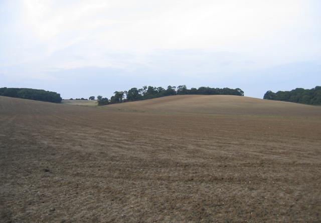 Farmland, Shefford, Beds