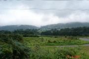 Farmland near Tal y Bont