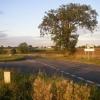 Tree Junction