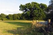 Farmland near Holtwood