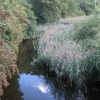 Droitwich Canal at Porter's Mill