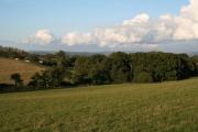 Cullompton: north to Coombe Farm