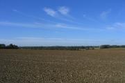 Open farmland near Wyatts Green, Essex