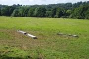Streele Wood farm