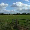 Pasture near Admington