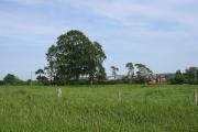 Field east of Yarpole