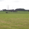 Fields at Tixall Farm