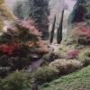 The Weir Gardens, Kenchester