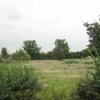 Pasture in Admington