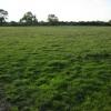 Field near Launton