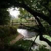 Footbridge over the Cuckmere River