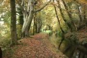Tavistock Canal, Lumburn Valley