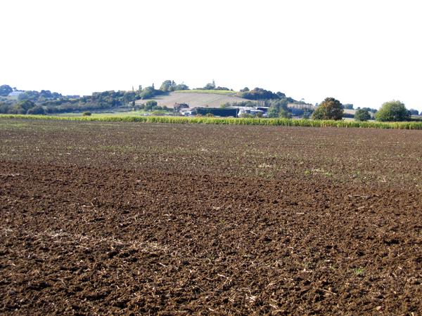 Farmland, Pulloxhill, Beds