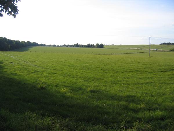 Farmland, Silsoe, Beds