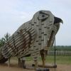 "Rosliston Forestry Centre ""Falcon"""