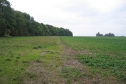 Maulden Wood and farmland, Maulden, Beds
