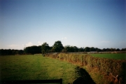 Farmland at Parbrook Billingshurst