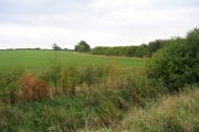 Farmland west of Great Lane, Clophill, Beds
