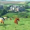 West Sherford Farm