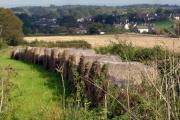Straw  bales, Higher Alston, near Churston