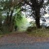 Damery Lane at Dawn
