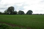 near Imbhams Farm