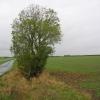 Farmland near Little Hatfield