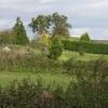 Castle Tump, Dymock