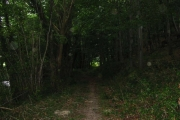 Ryland's Wood