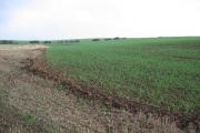 Farmland near Tunstall Drain