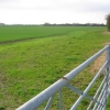 Farmland West of Withernwick