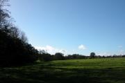 Farmland and Woodland West of Midhurst