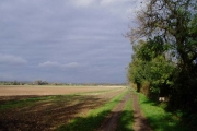 Arable land on Rectory Farm