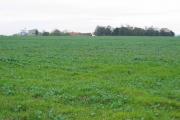 Farmland West of Leven