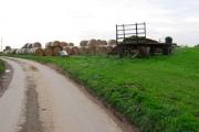 Farmland South of Burshill
