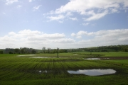 The Haugh, Farnley Farm