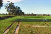 Oakleaze Farm