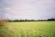 Farmland, Braywoodside