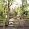 Sunnybank Wood