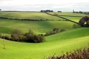 Farmland east of Kingswear