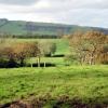 Farmland near Waddeton